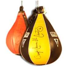 Speed Bags